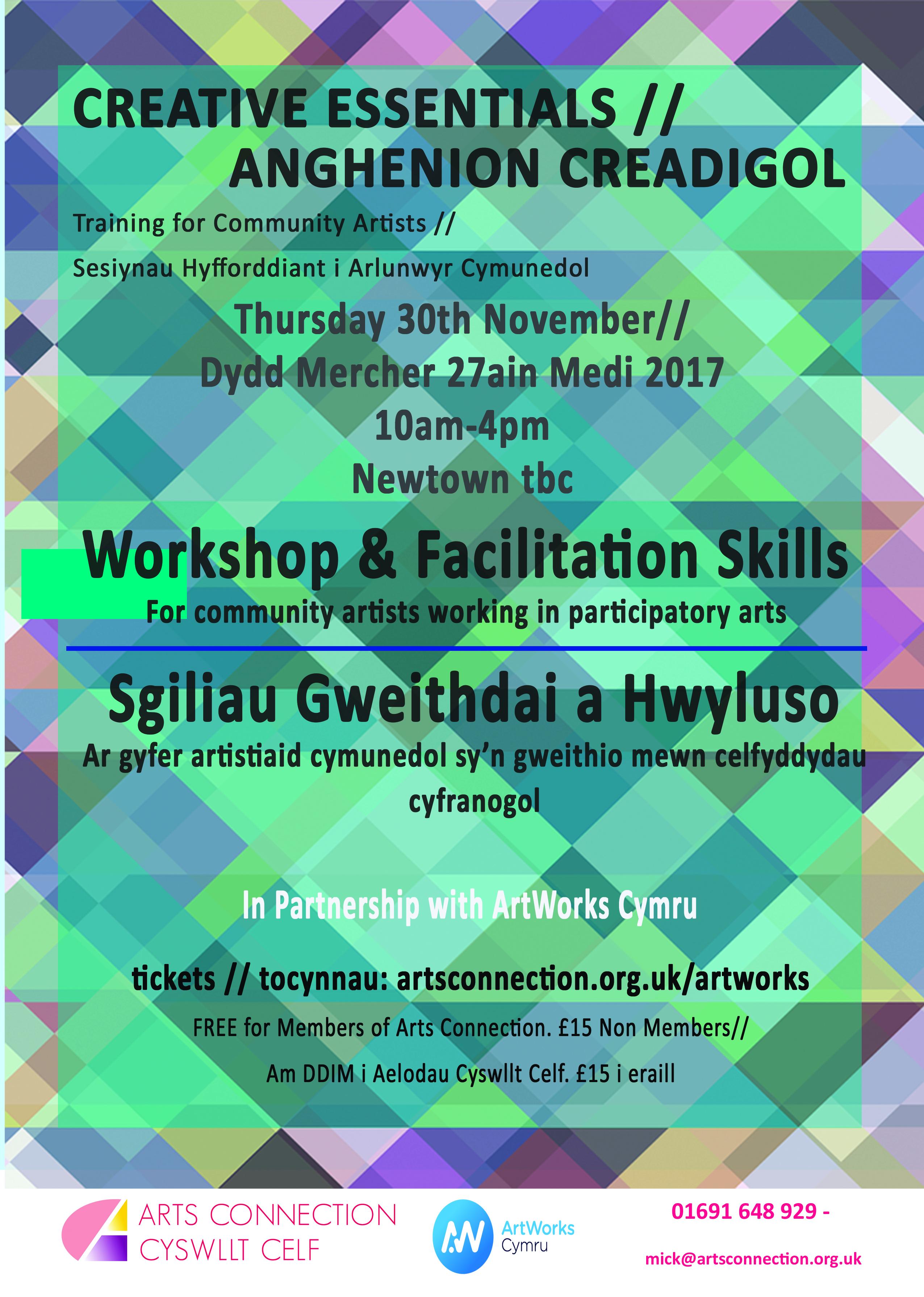Workshop & Facilitation Skills CPD - Newtown