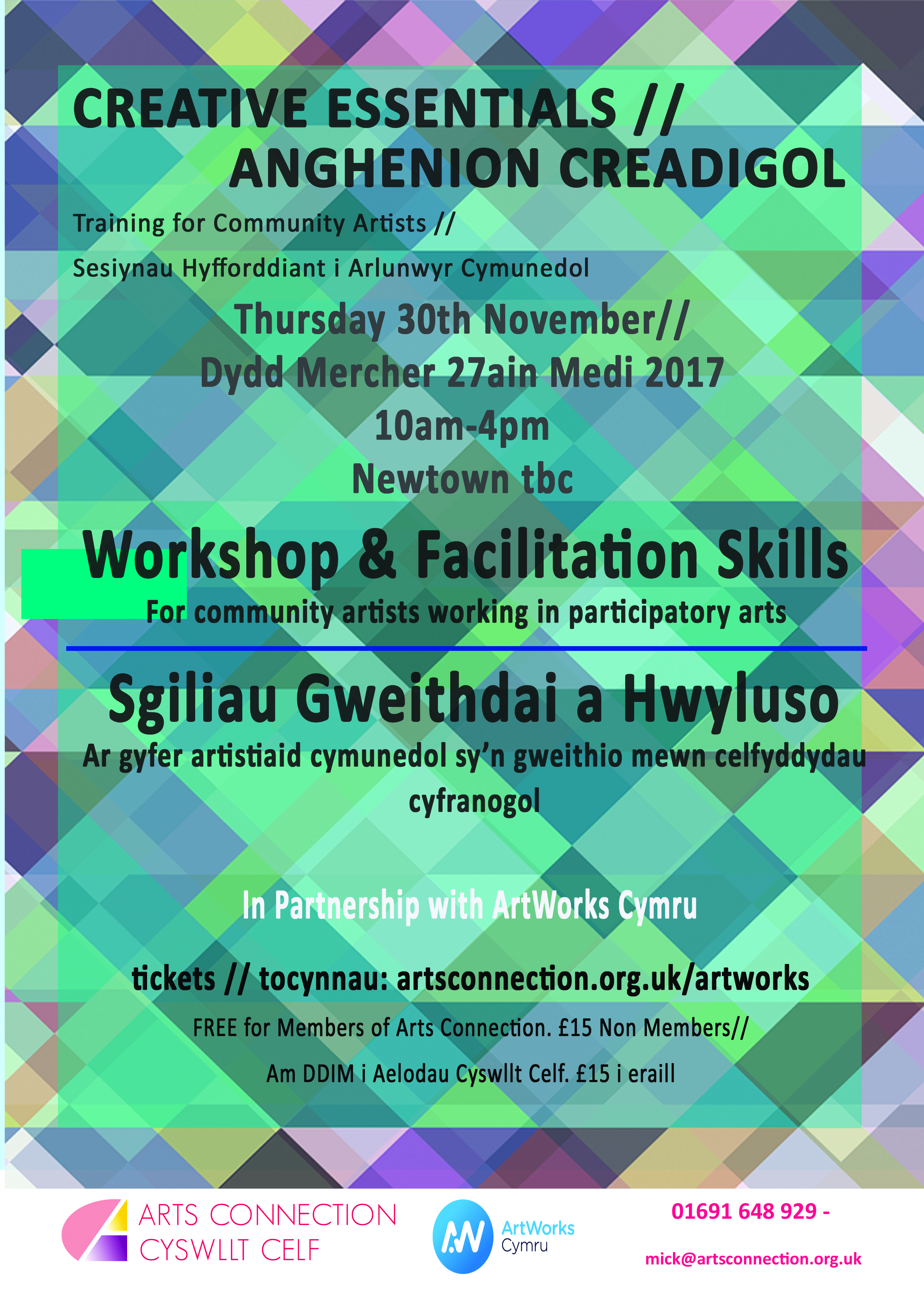 Workshop & Facilitation Skills CPD - Newtown